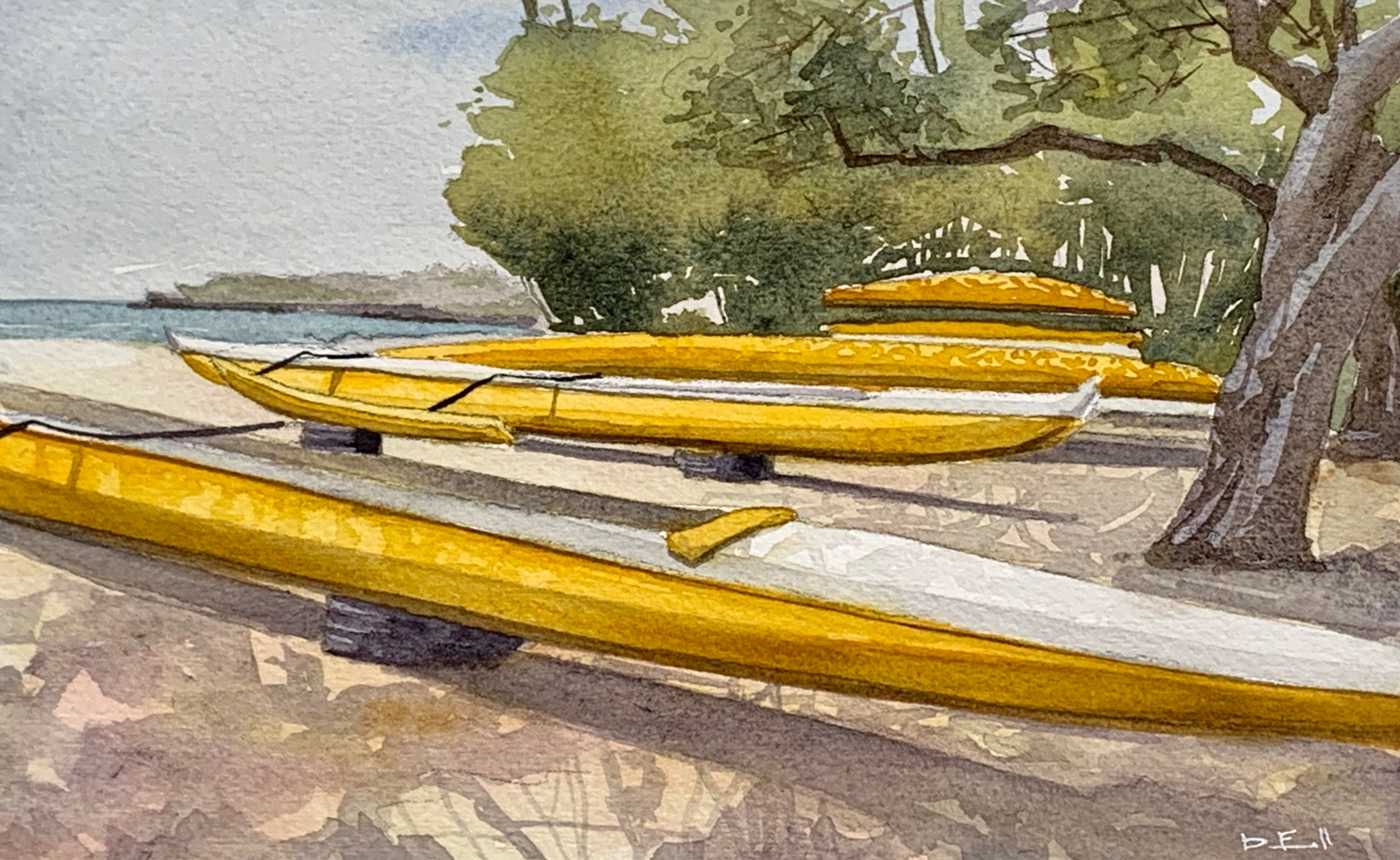 04 yellow outrigger canoes m9evcn