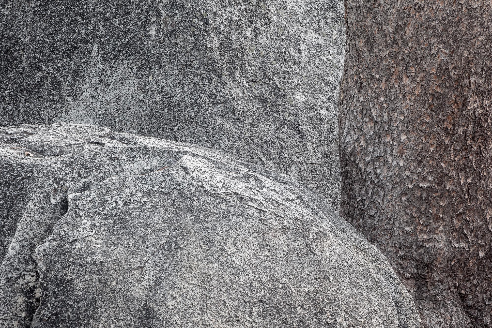 Boulders and pine axpqex
