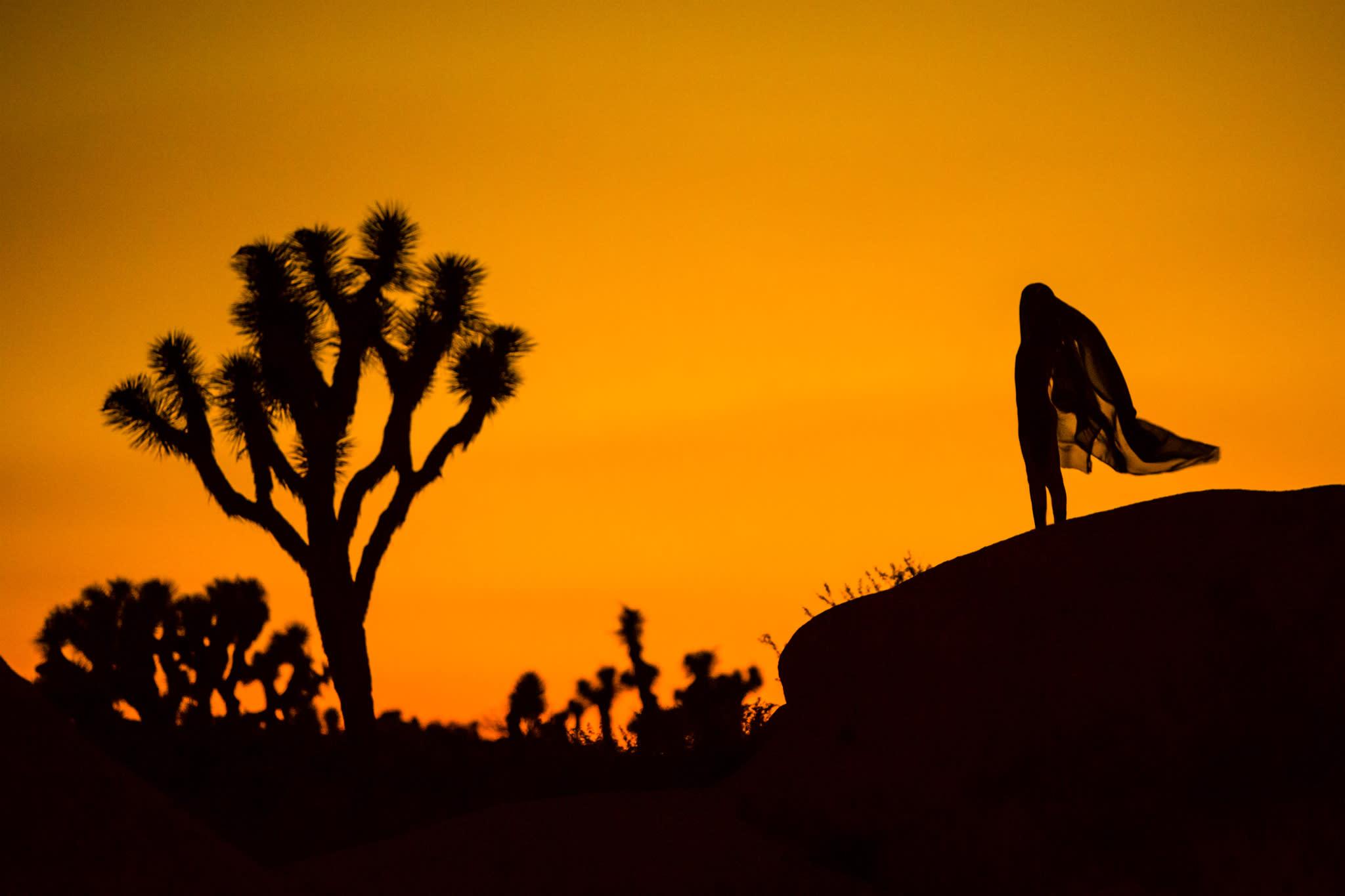 11 clayton woodley ydesert silhouette shot in joshua tree jwcqwq