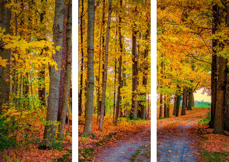Fall driveway preview e42r4n