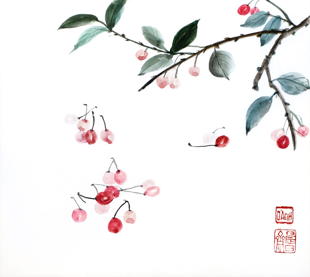 Cherries falling pur7fz