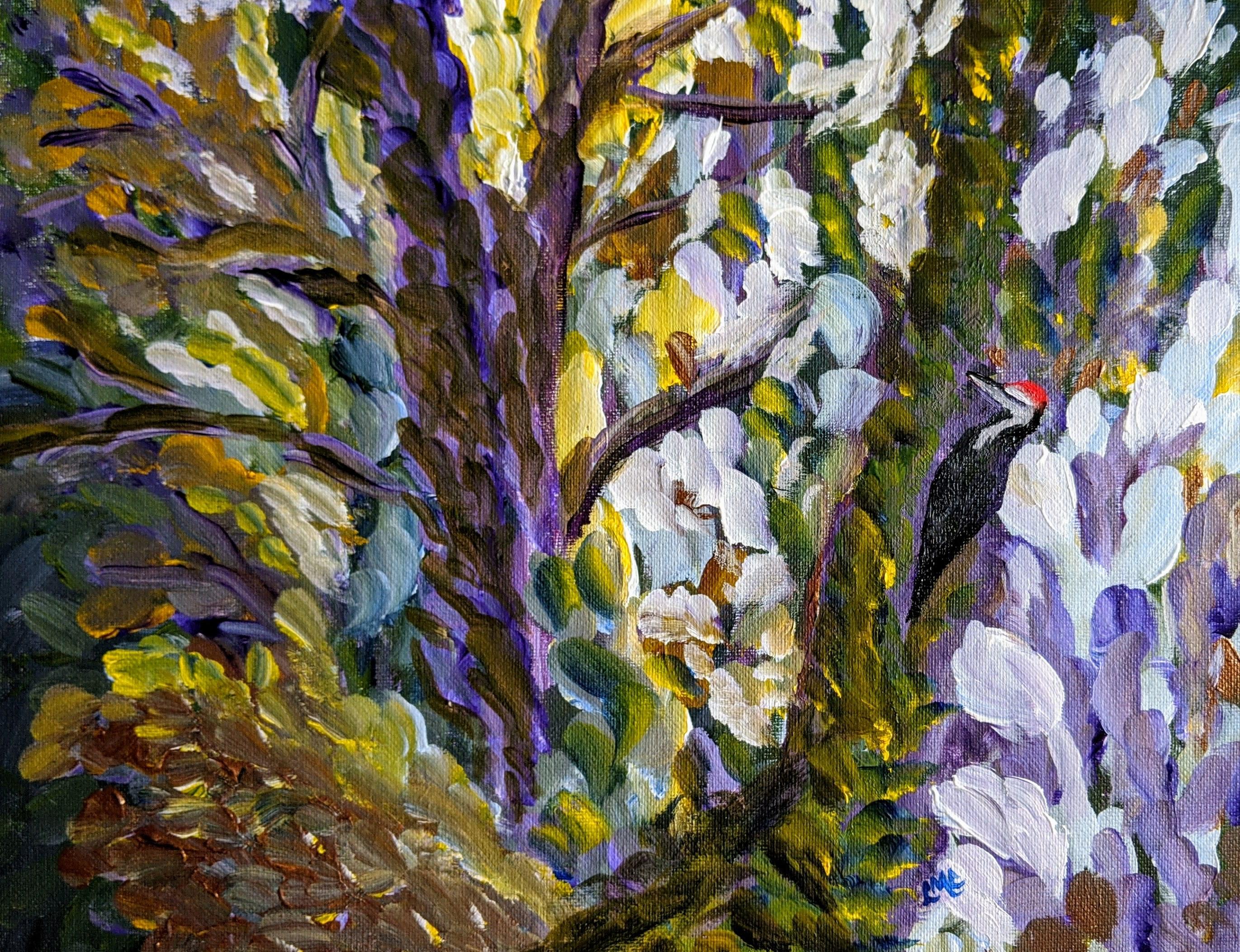 Pileatedwoodpeckintheforest hlarcz