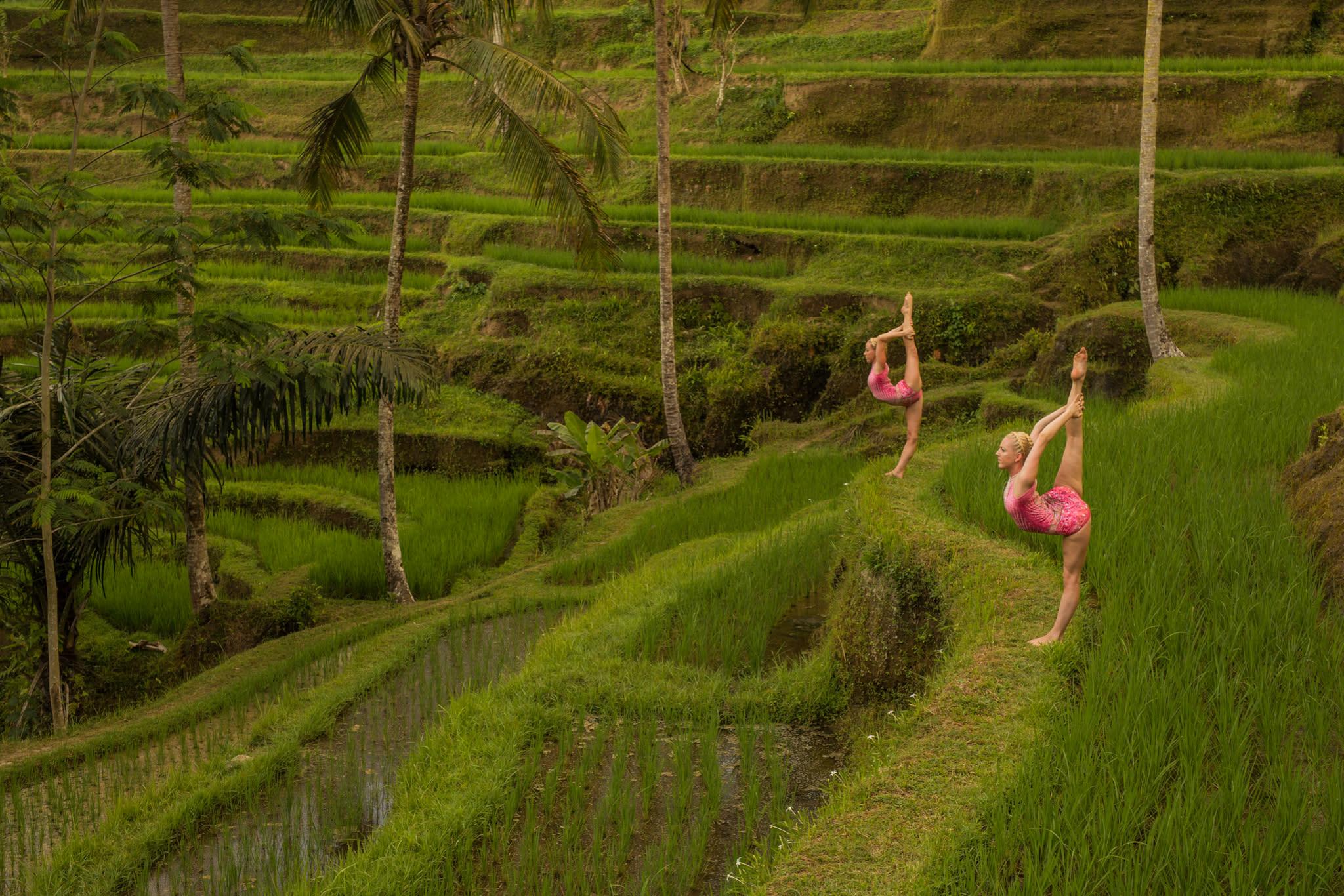Terrace of tegallalang iii n0hih4