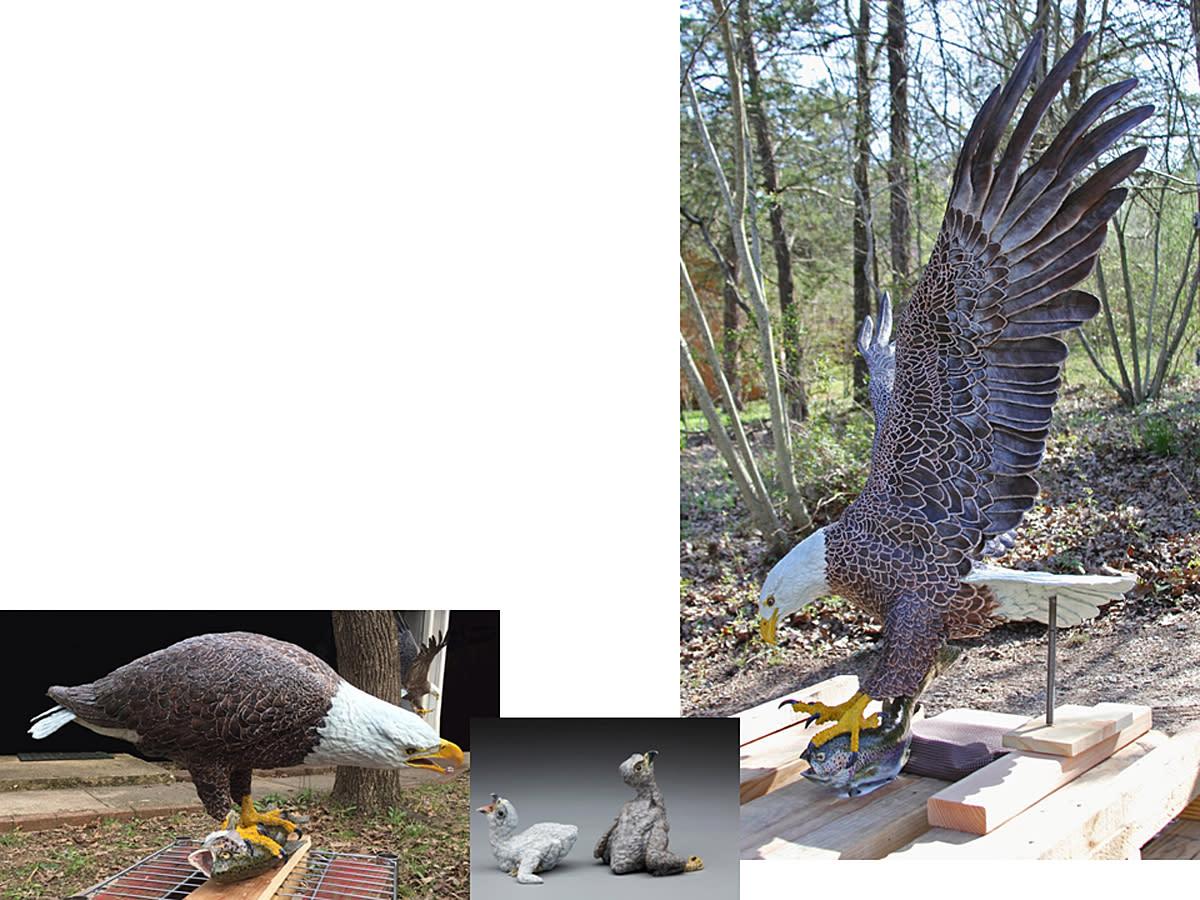 Composite bald eagle family2 pxtlp8