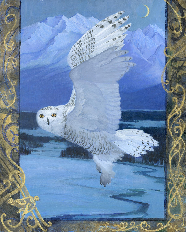 Snowy owl u2v5ts