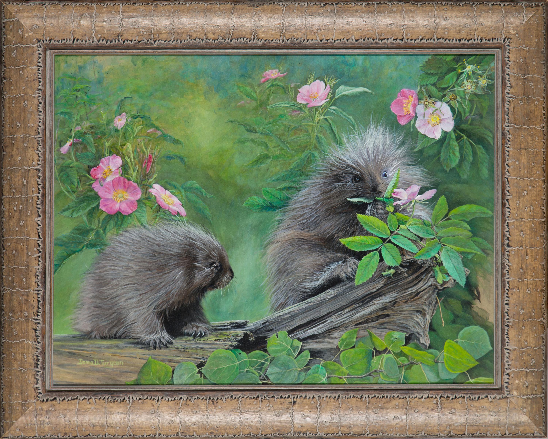 Baby porcupines pee7gj