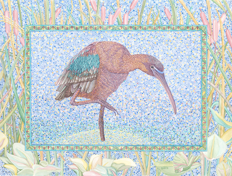 Glossy ibis 300ppi duwsmz