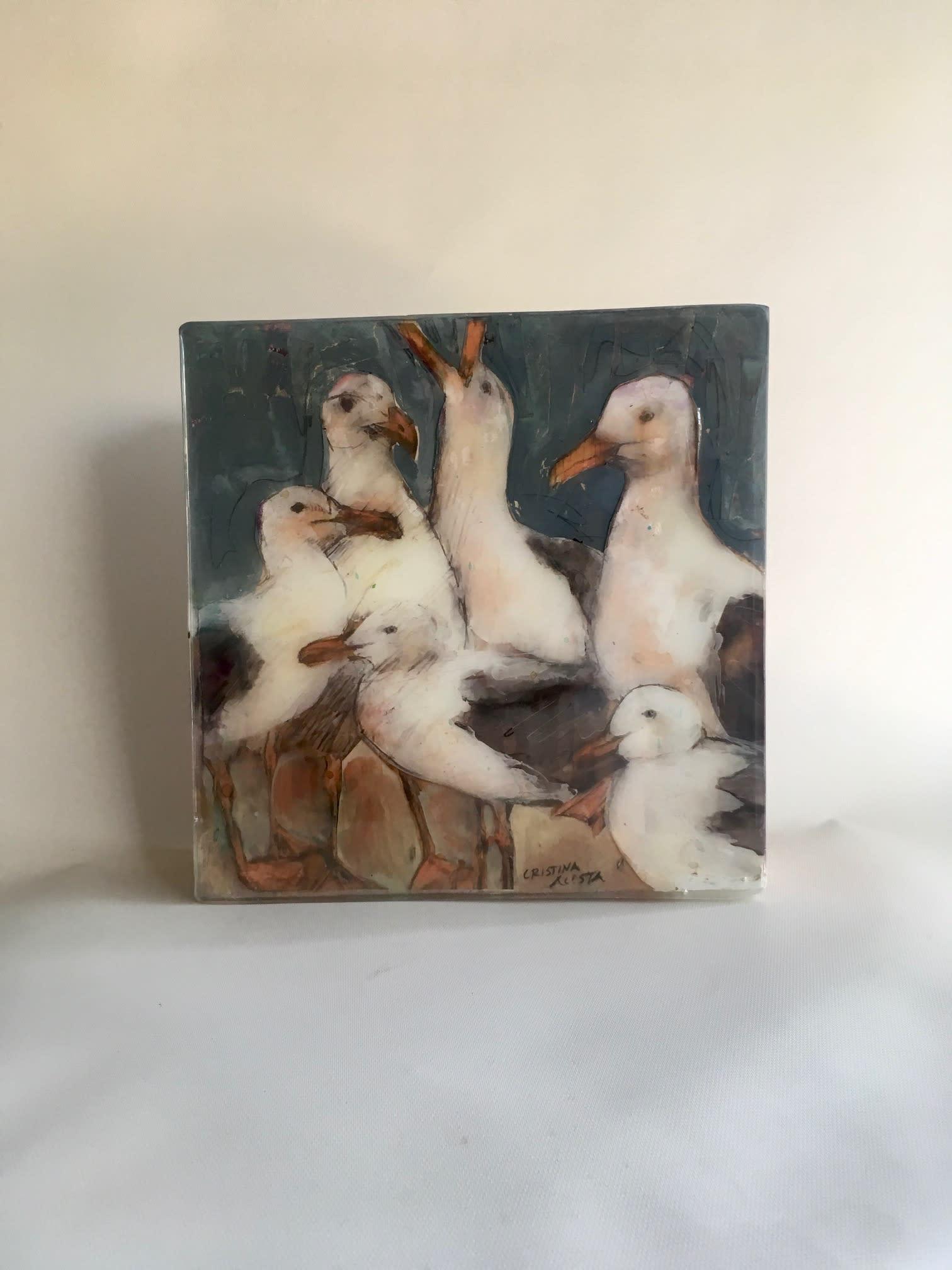 Seagulls 1 tidzcw