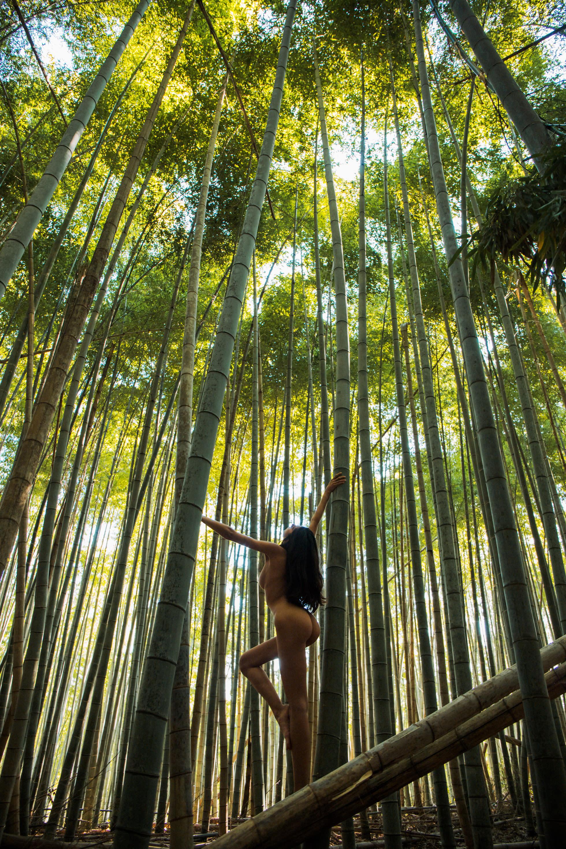 Cw arashiyama p6n3ye