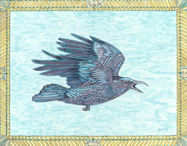 Raven flying txwkip
