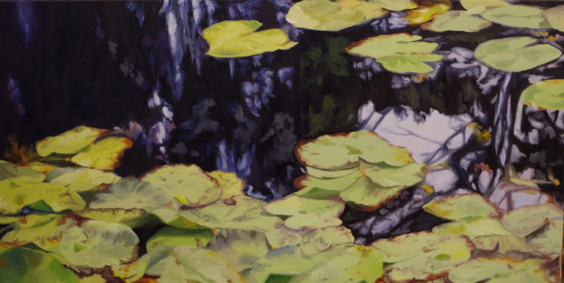 Water lilies in france hpcj1m