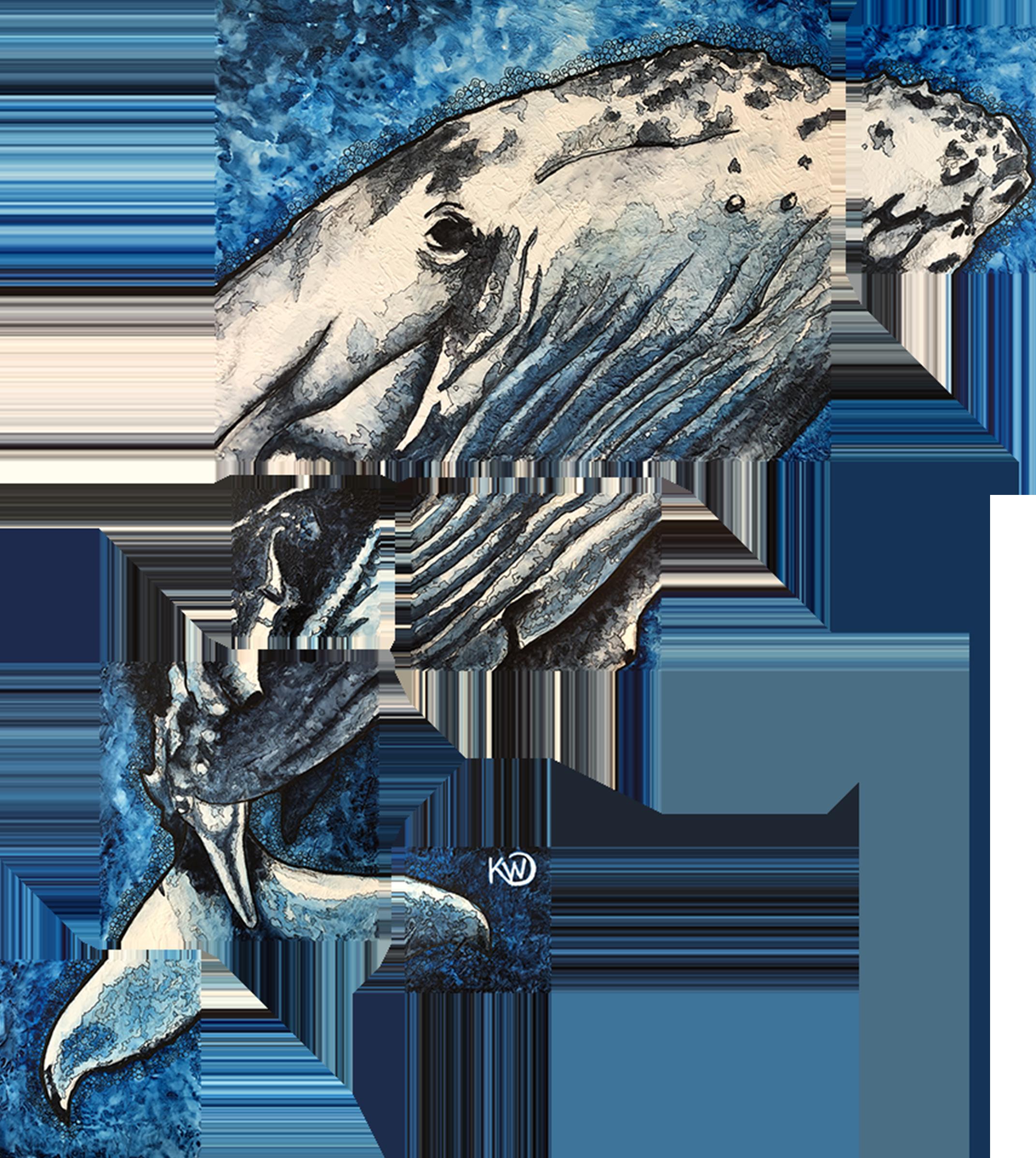 Humpbackwhale zbsyjg