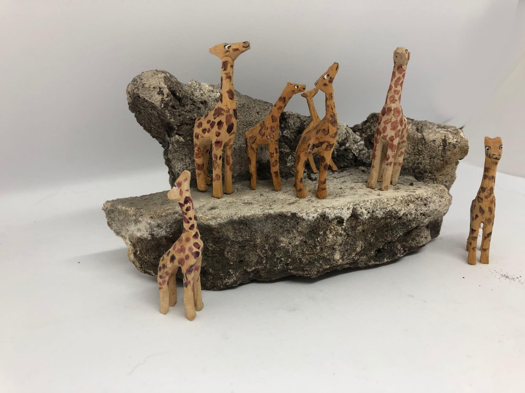 Giraffes2 hwjyuk