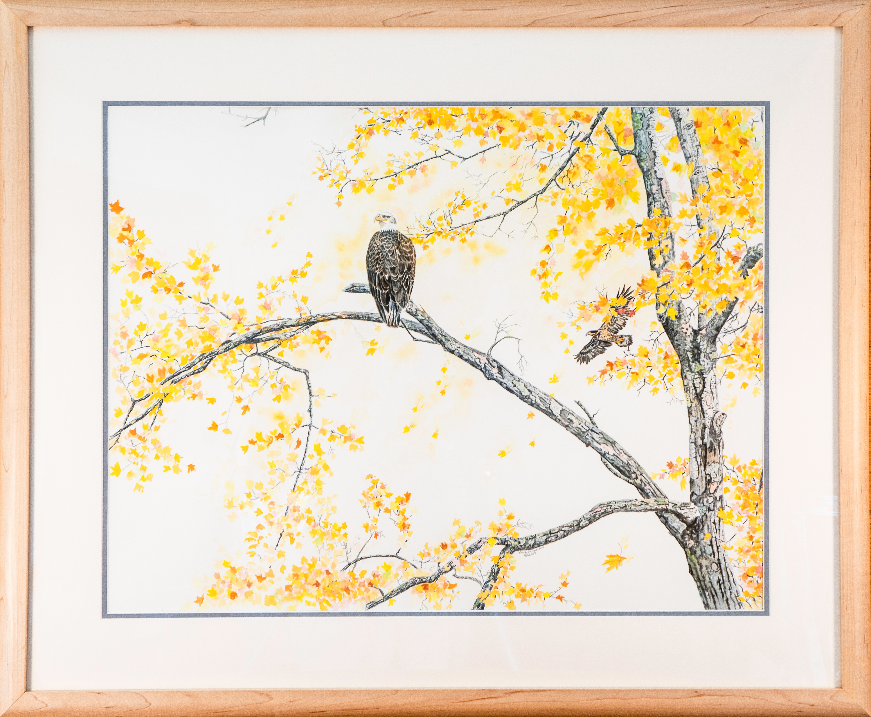 Betsie river eagle framed copy e03wqg