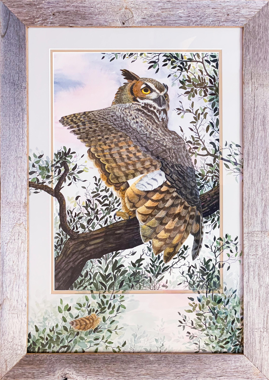 Great horned owl framed ylco6b