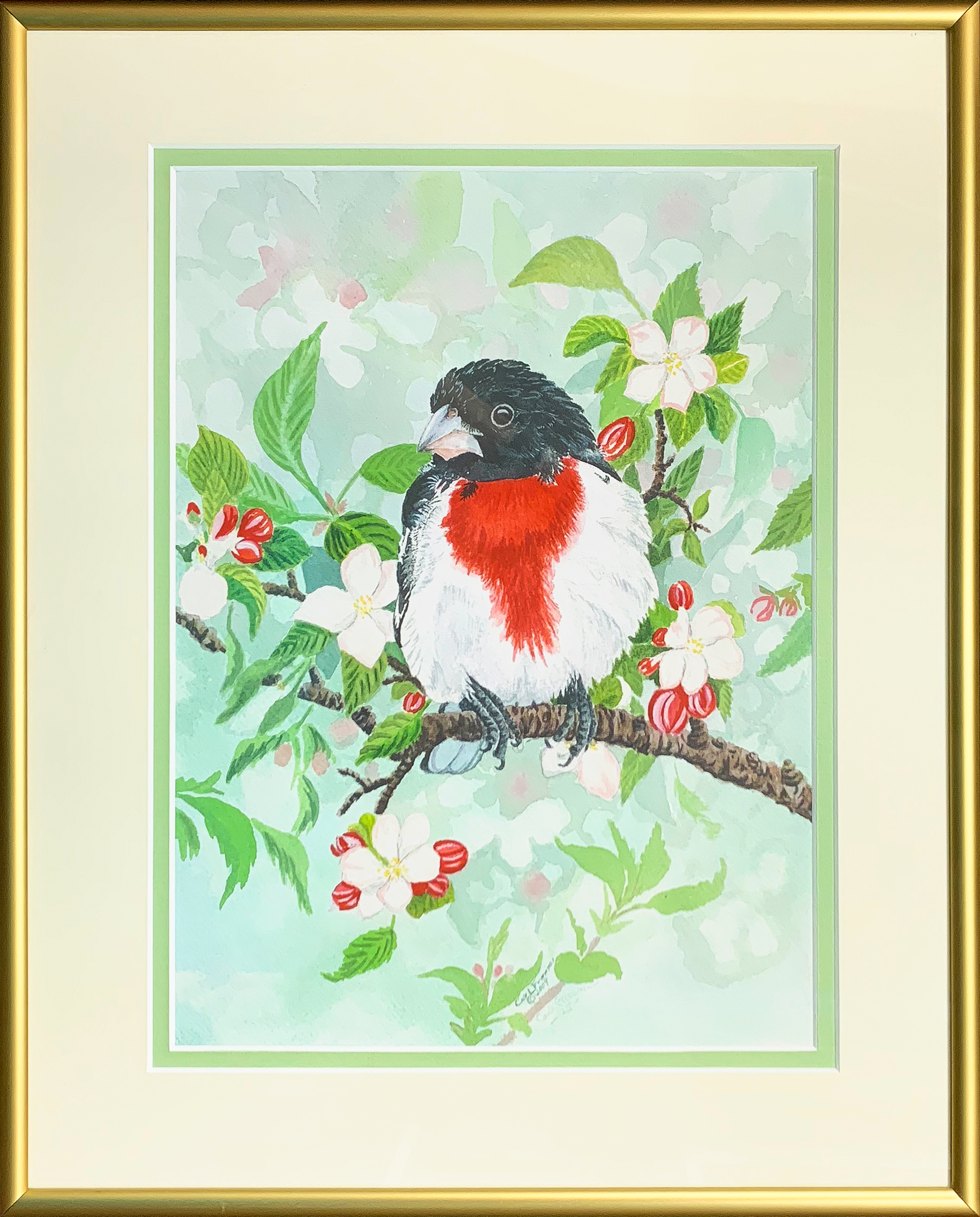 Rose breasted grosbeak framed iz2fwv