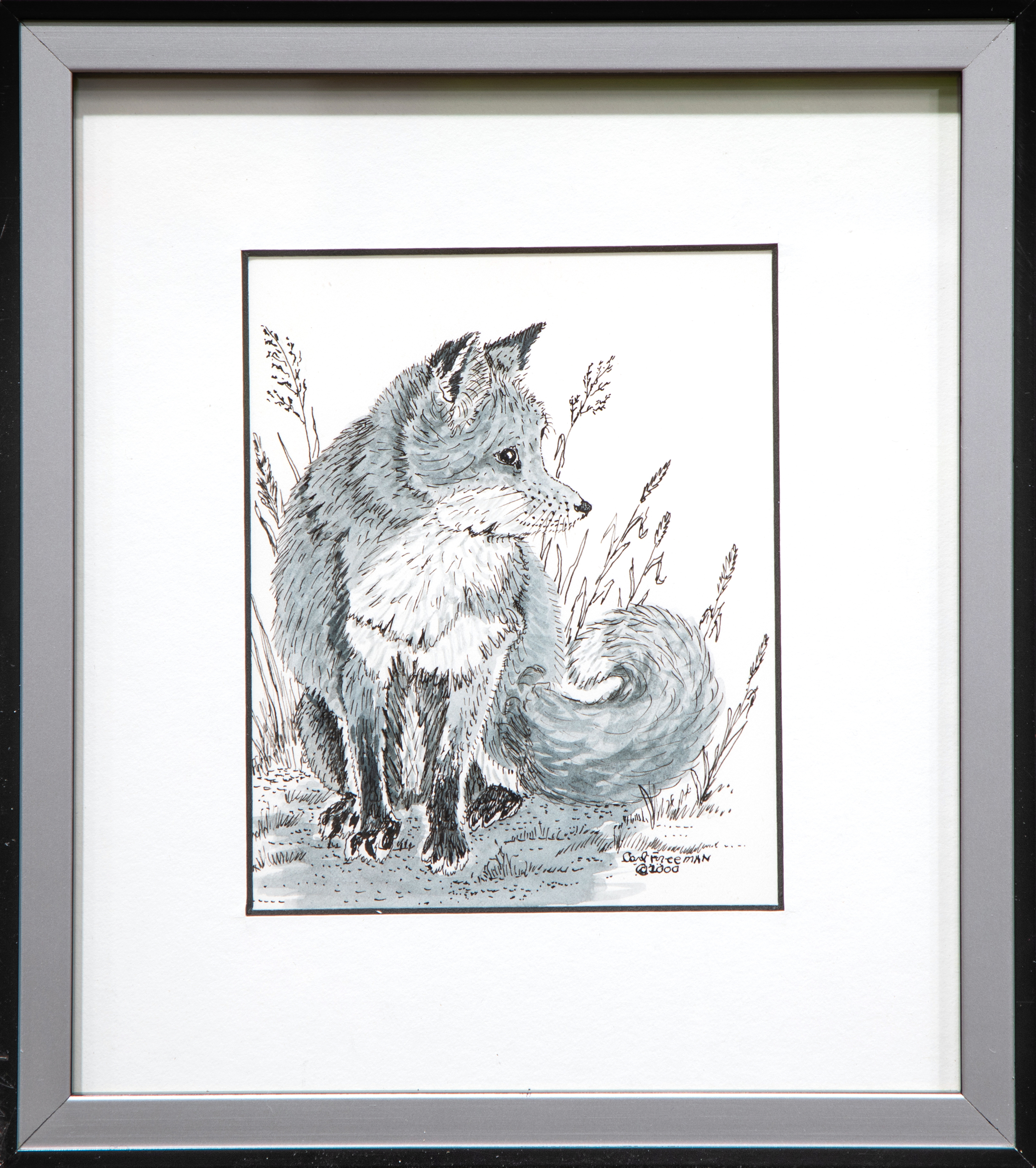 Red fox orig st framed uketlq