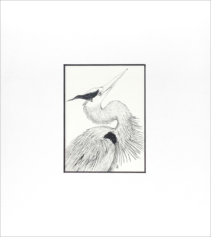 Great blue heron copy nqyndg