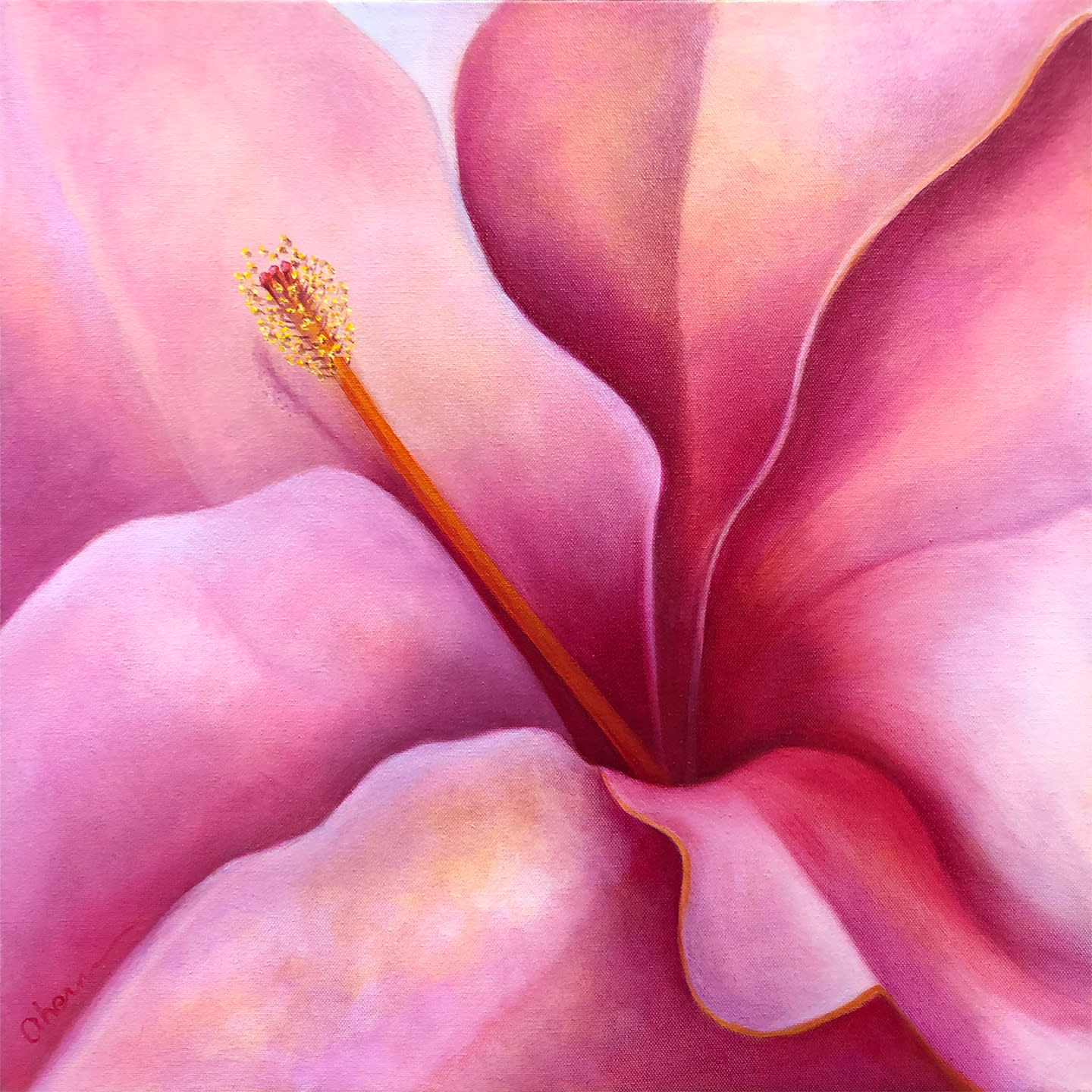 1181028 here i am pink hibiscus 20x72 hpdjmv