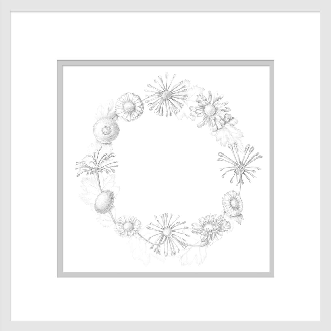 020501 circle of compositae 10x10 matted to16x16 tgonck