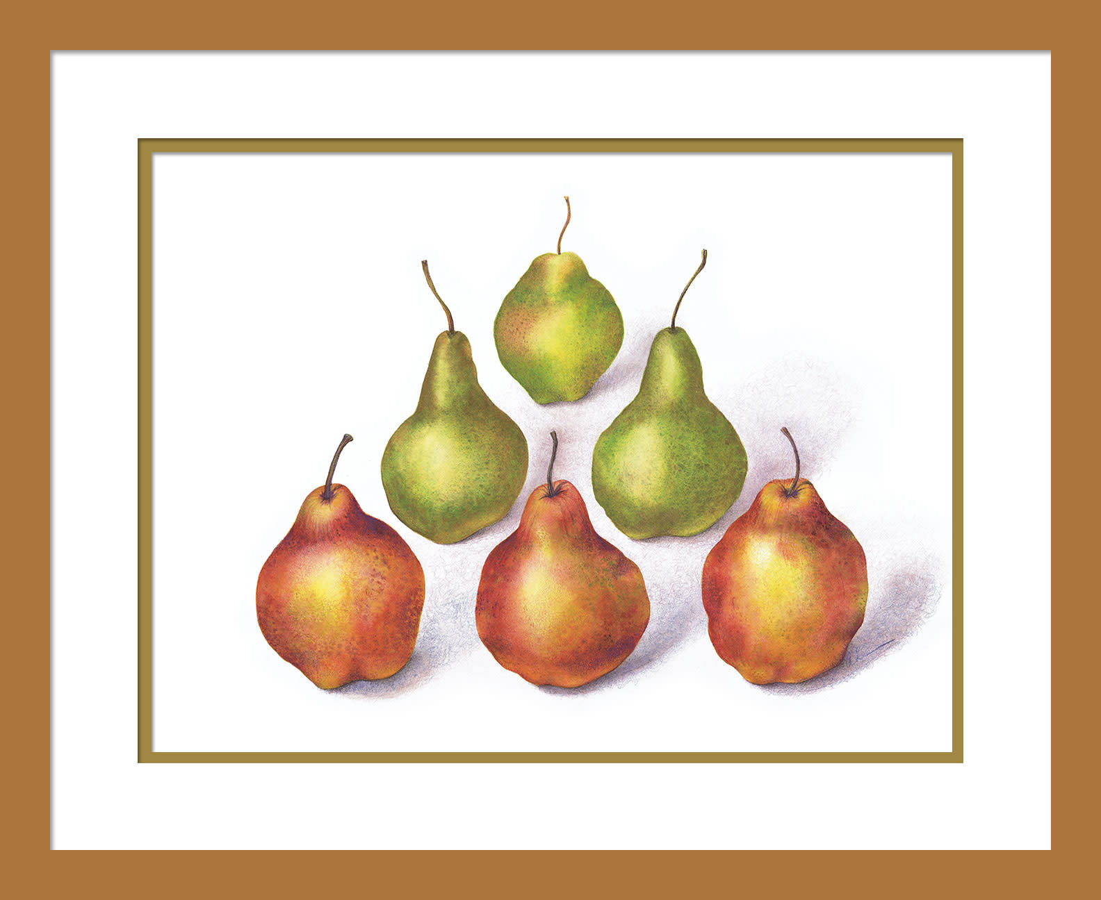 030503 pyramid pears  1 12x16 matted in 16x20 frame oq7bnh