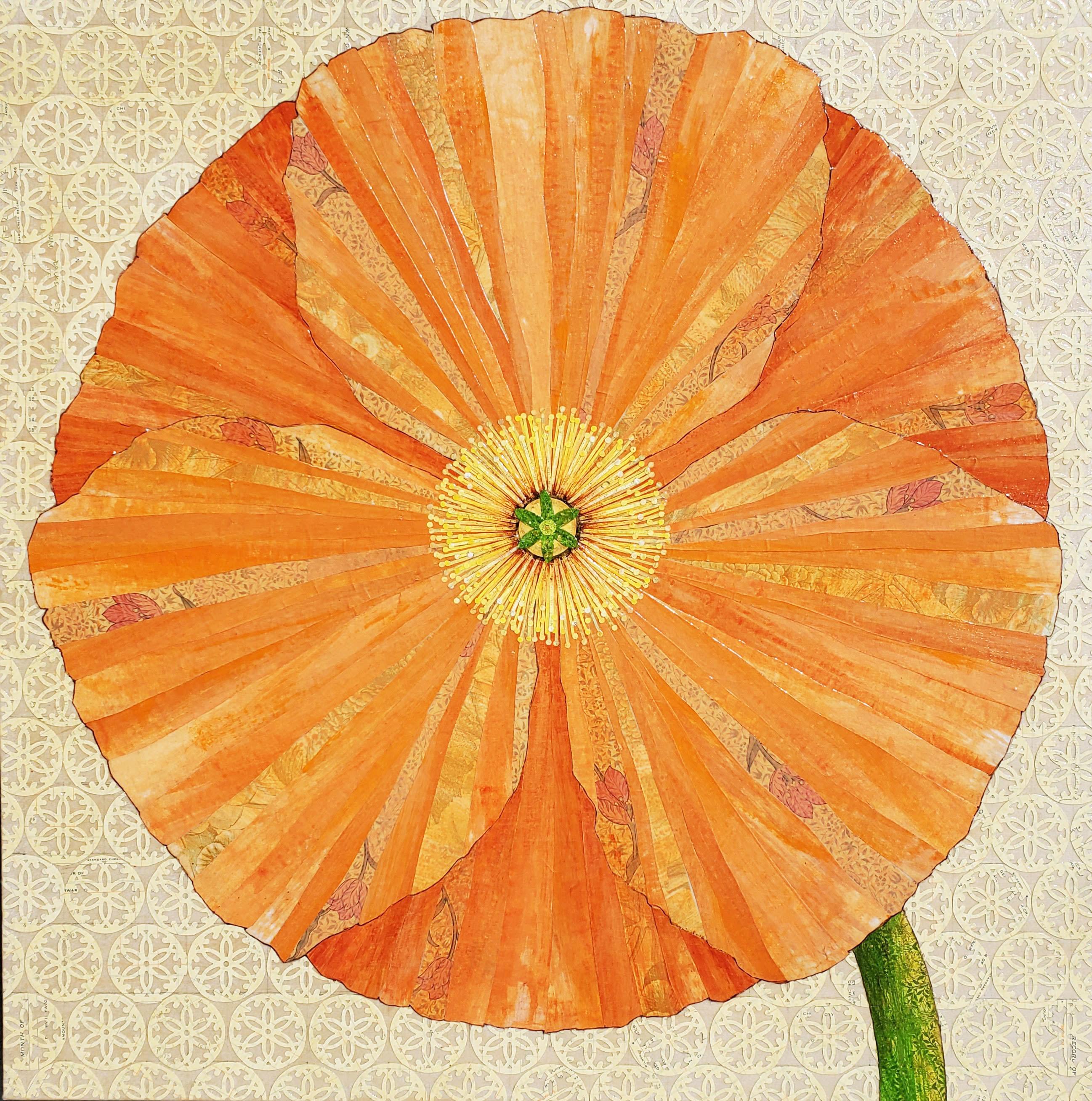 California poppy 24x24 tdlahr