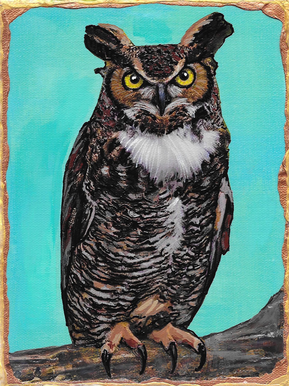 Great horned owl kbgafw