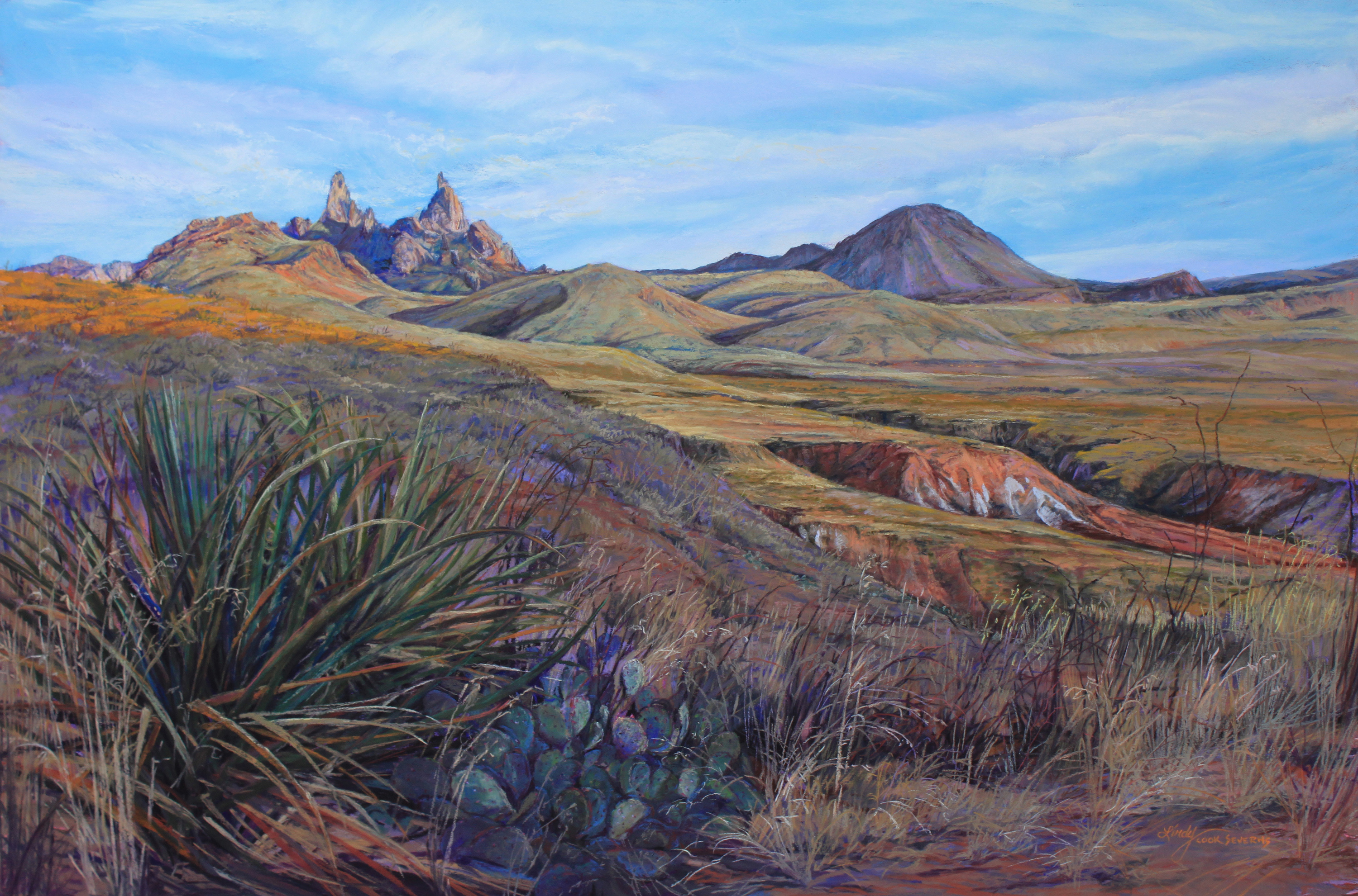 Serenity in the tx desert 24x36p 10 lxulxt