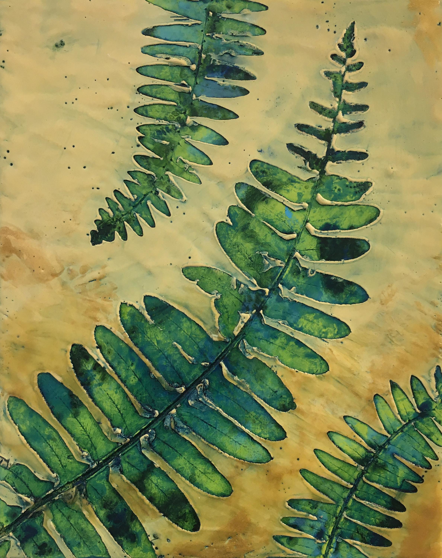 Bridgetbenton ferns8x10 encausticnatureprint  325 front ztuxds