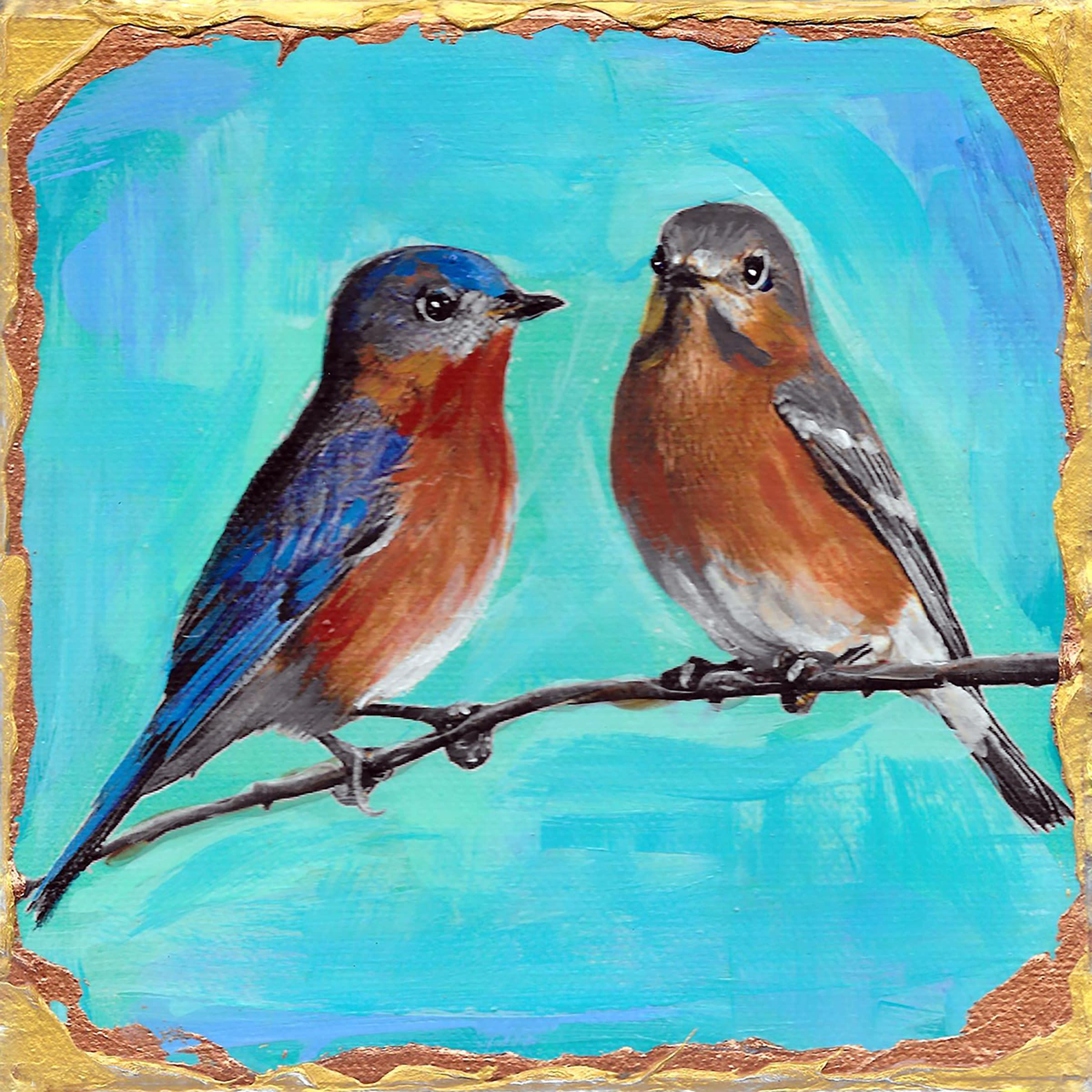 Eastern bluebird couple d6qkm2