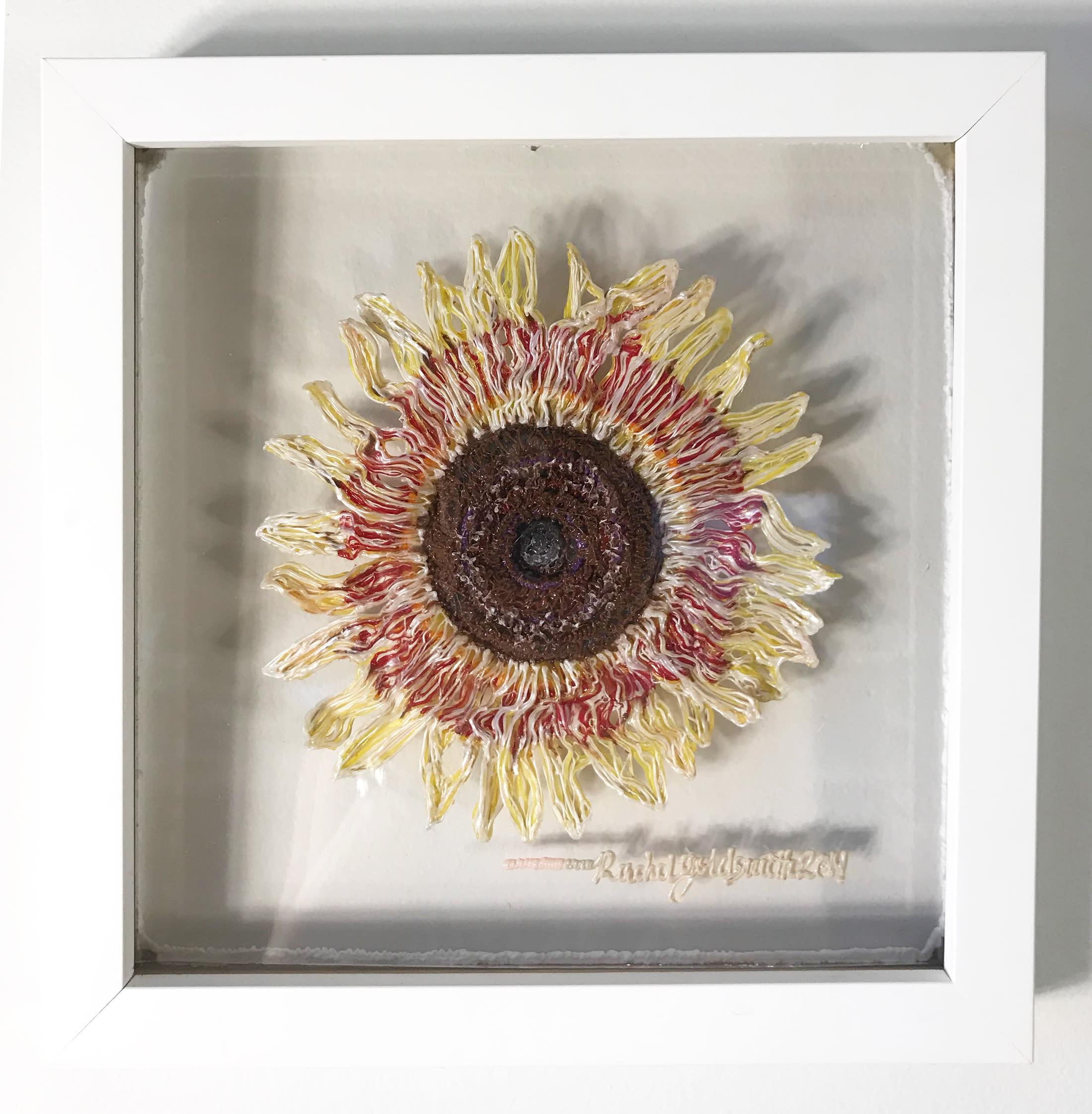 Sunflower cpnfzz