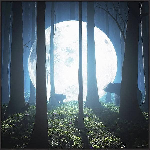 Moonlandingframed l4nnmn