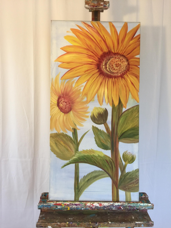Tuscan sunflower av6yrb