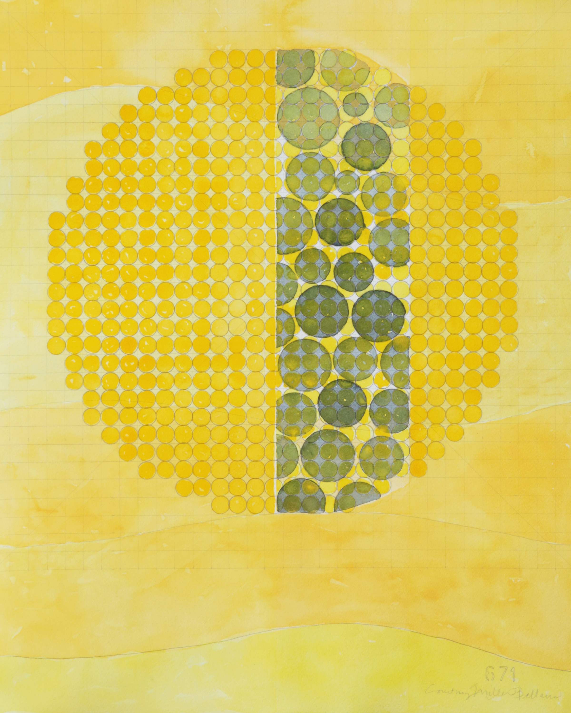 671 yellow2 lpoku2