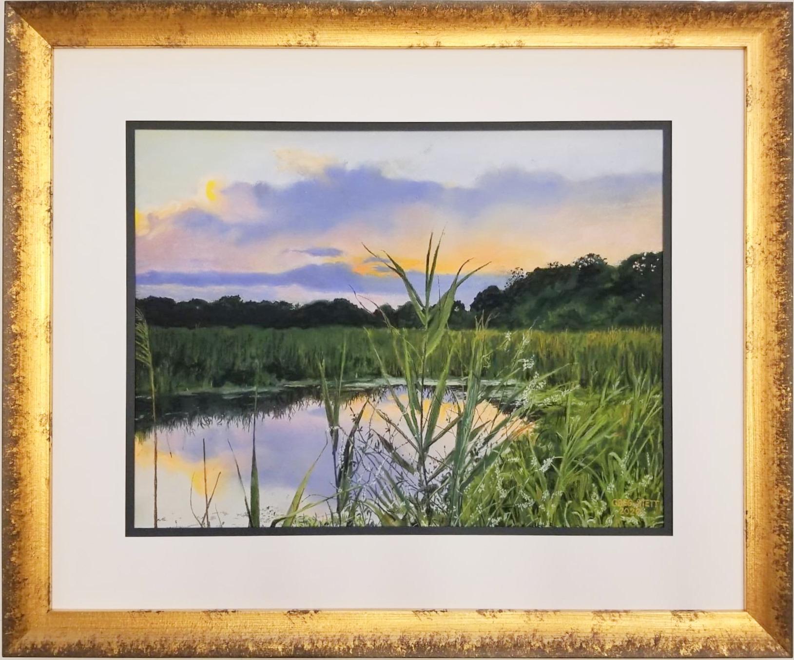 Wetlands at sunset hjvt1b