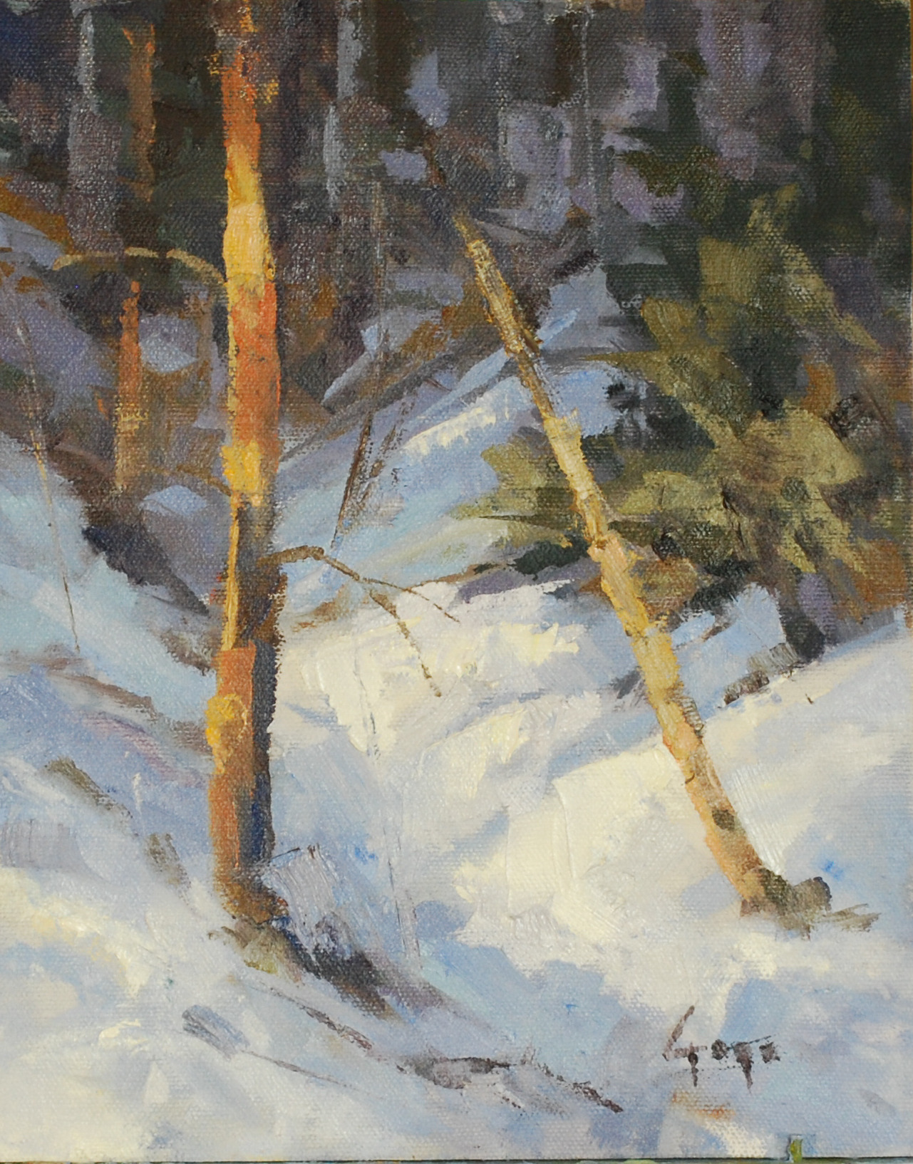 Winter path slivmo