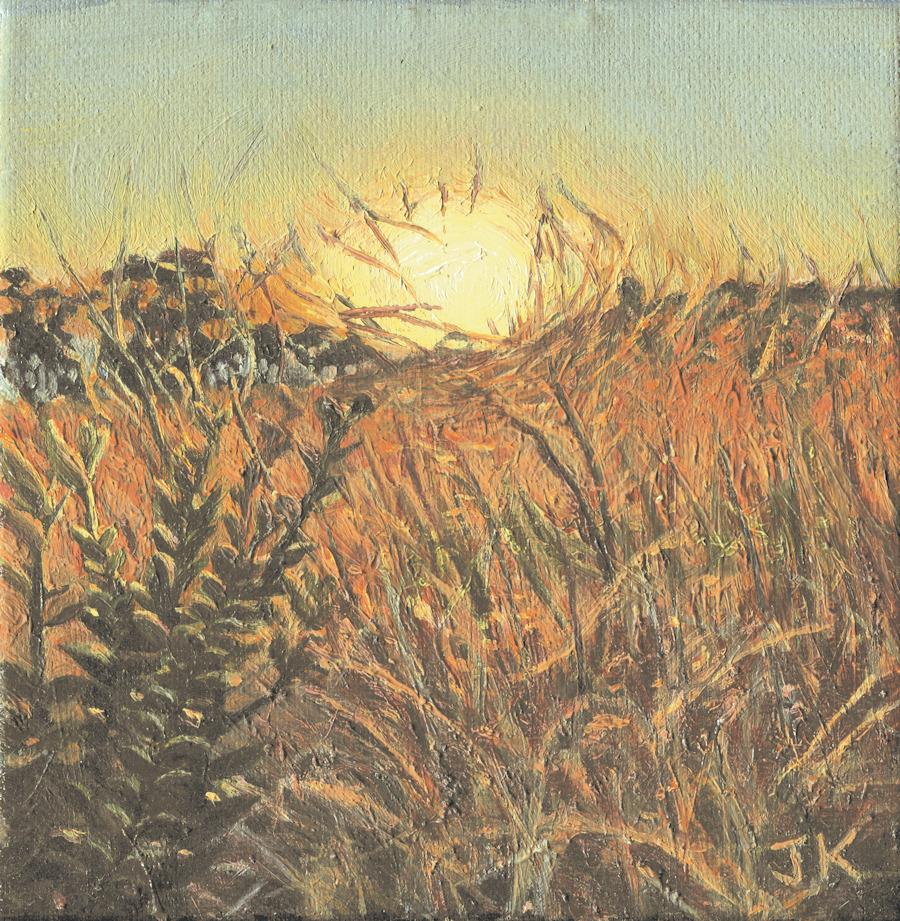 Sunset palos verdes hdrbzi