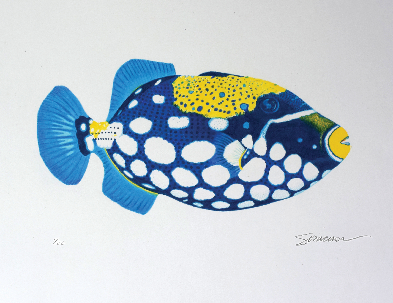 Trigger fish no 1 limited edition print fbeod6