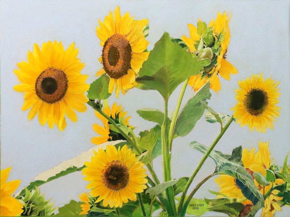 Sunflowers wtcak1