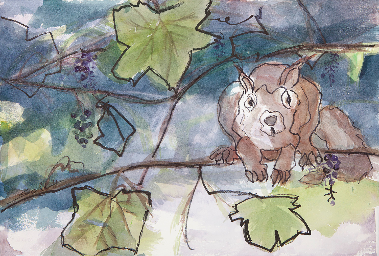 Squirrel q47nab