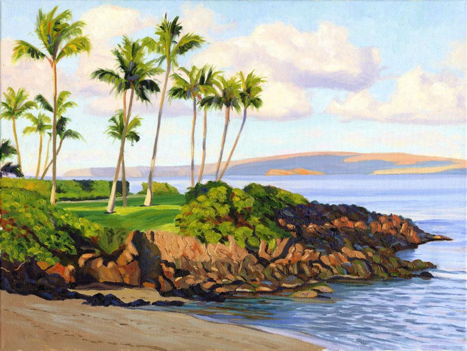 Ulua beach v62zvt