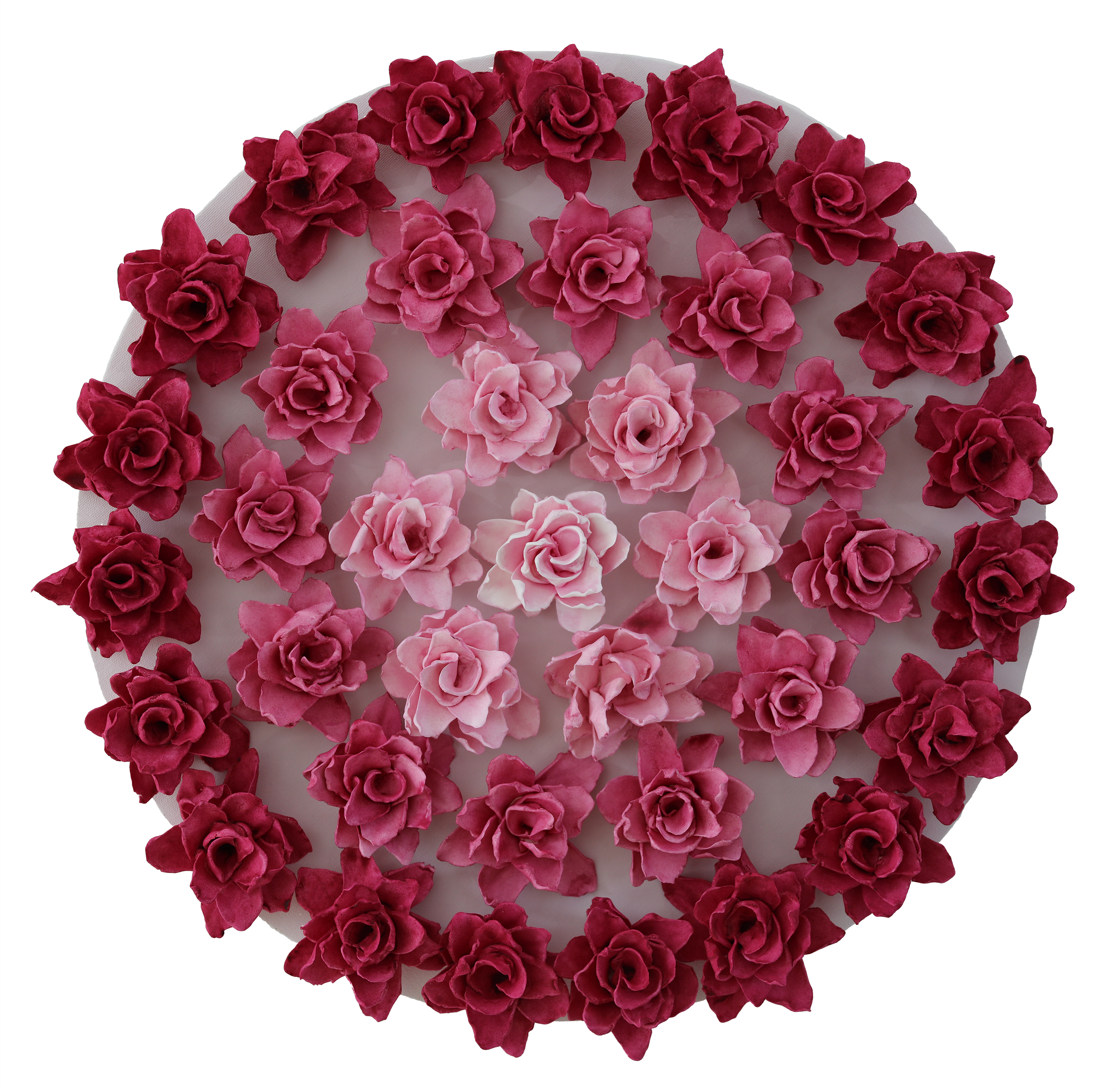 Mandala rosy orig white background mysug8