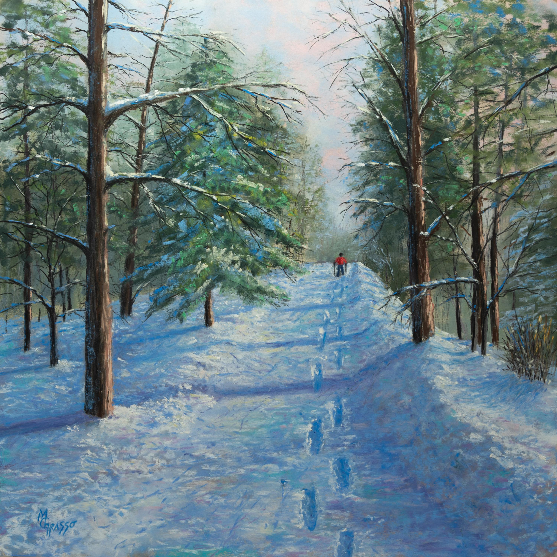 A walk through winter sm tssu3b