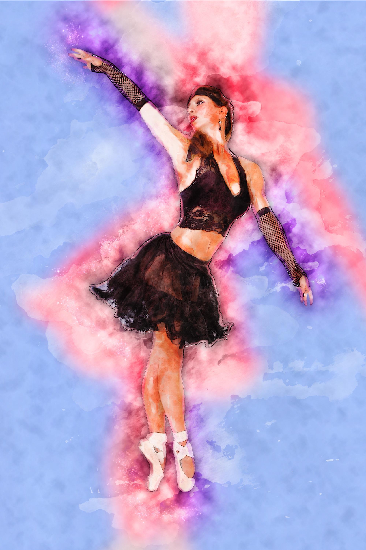 Suzanne barton black swan i 20x30  archival canvas surface print 350 ht81wf