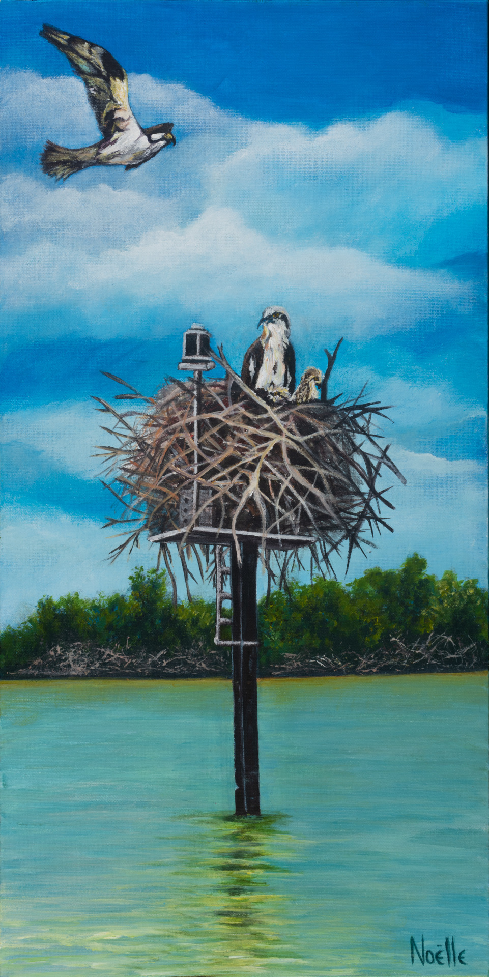 Noelle mccarthy home sweet osprey acrylic 12x24 475.00 wicit9