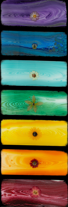 Am21p 013 flowered chakra solar plexus sunflower.jpg vueyqv