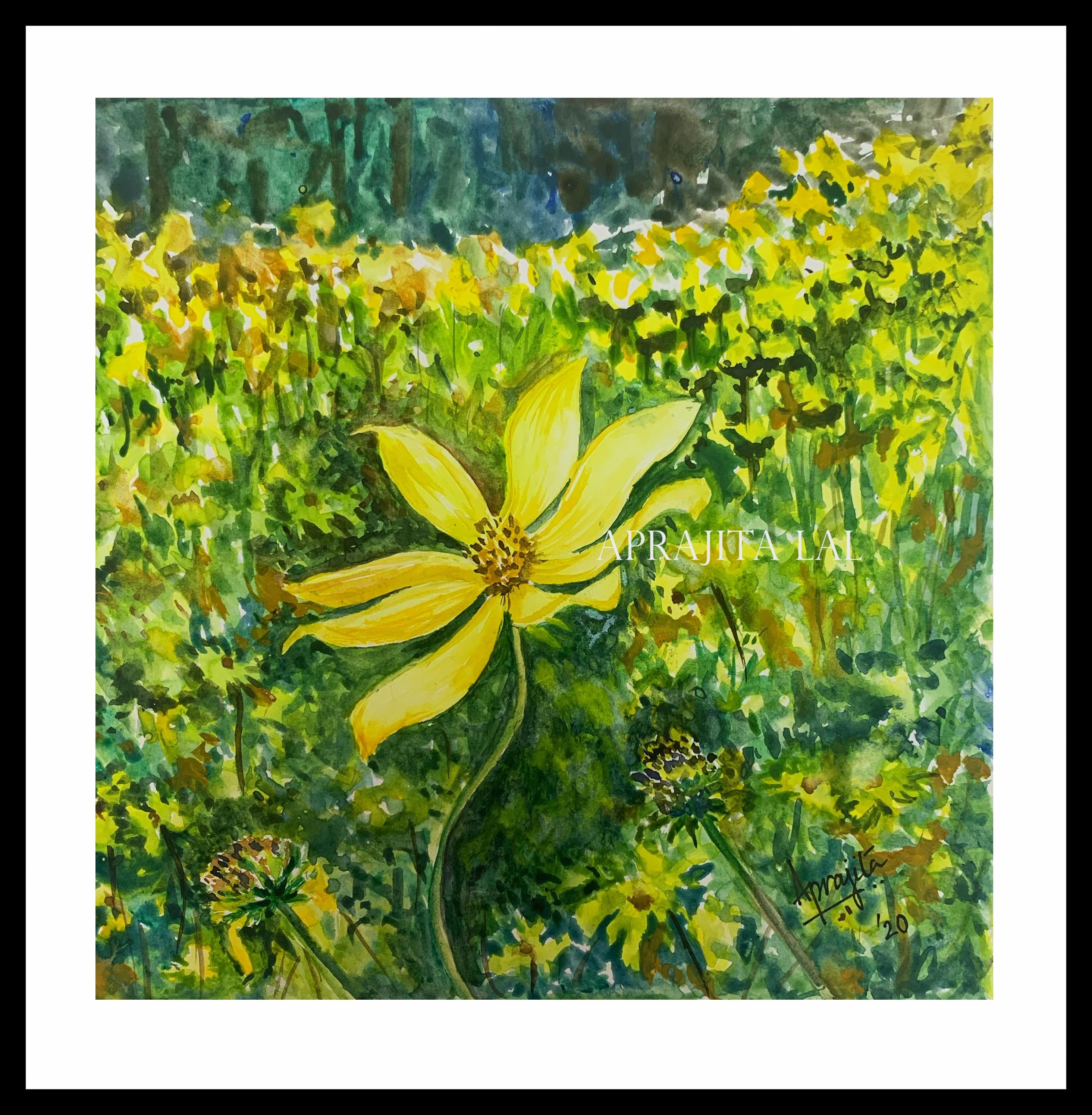 A trail of yellow flowers wm psenig