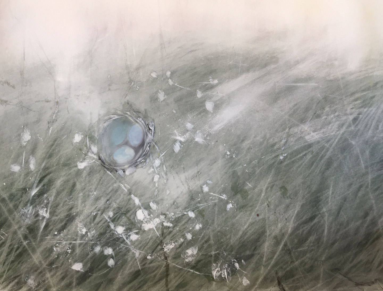 Unspoken fiber nest olp5a9
