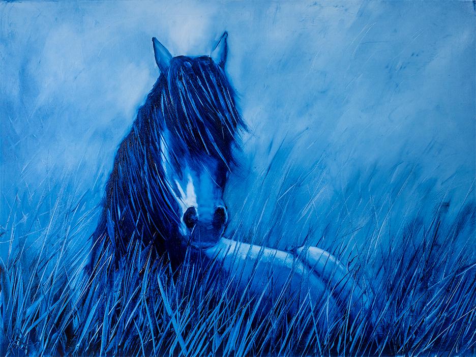Rest in blue arowan 40x30lr krndna