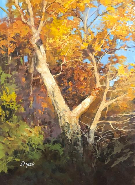 Fall maple 12x16 vo15ho